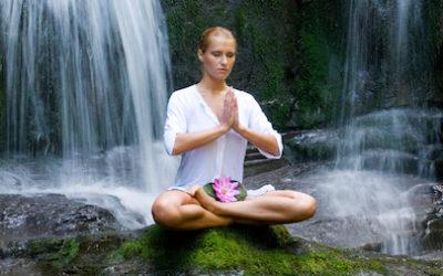 Warum nutzen Spas & Wellness-Anbieter die entspannende Wirkung einer Wasserwand?